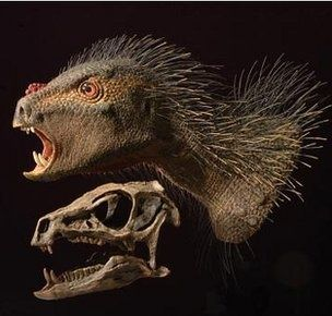 A bizarre dinosaur described as a cross between a bird, a vampire and a porcupine has been identified from fossils in South Africa. (via BBC News)