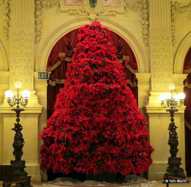 46 Best Newport RI Images On Pinterest Newport Rhode Island  - Christmas Trees Ri
