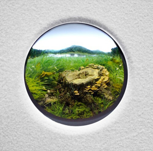 Dioramas by artist Patrick Jacobs
