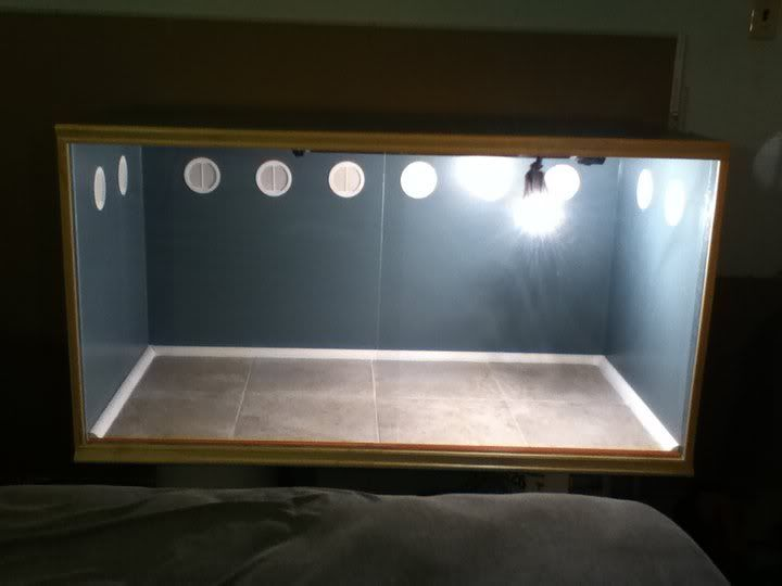 build your own bearded dragon cage   DIY 4x2x2 cage finished!!