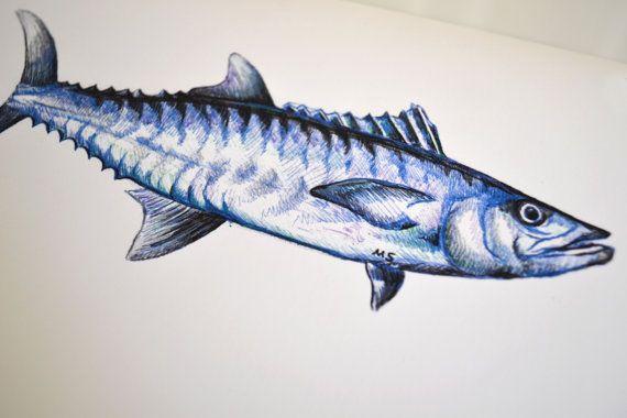 Kingfish Drawing Fish Art Print Fishing Gift 8 X Etsy Fish Art Art Prints Fishing Gifts