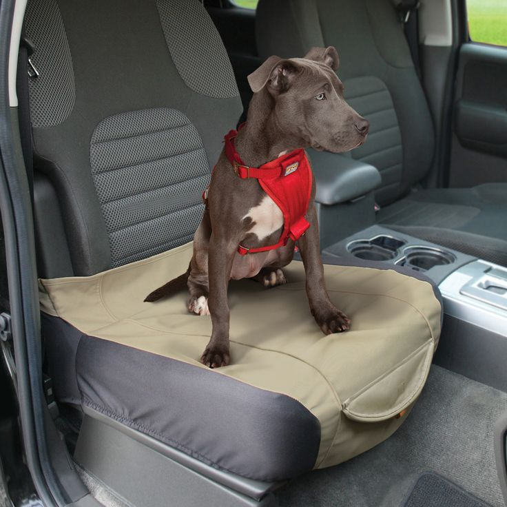Kurgo Dog Products - Shorty Bucket Seat Cover, $30.00 (http://www.kurgo.com/car-seat-covers/shorty-bucket-seat-cover/)
