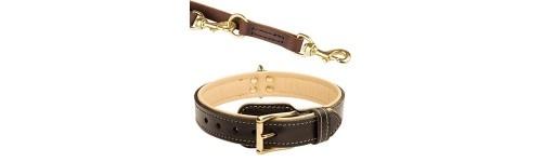 Collares, correas, bozales y arneses para tu perro al mejor precio en la tienda de mascotas online Wakuplanet.com