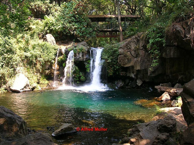 Uruapan, Michoacan, Mexico. Parque nacional de Uruapan