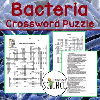 """newspaper terms crossword This crossword puzzle, """"newsletter/newspaper terms,"""" was created using the crossword hobbyist puzzle maker."""