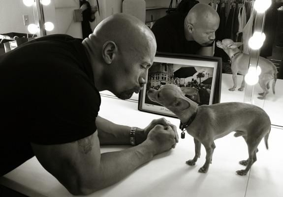 The Rock, Dwayne Johnson, WWE and a chihuahua.  There is something so adorable about a great big tough dude and a tiny little dog.  No offense to my chihuahua, Wyatt, who is certain he is a mastiff.  You are, little buddy--you are.