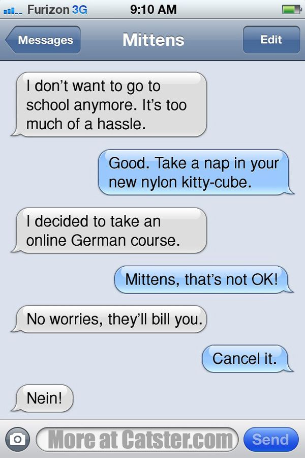 Texts From Mittens: The Back-to-School (or Not) Edition