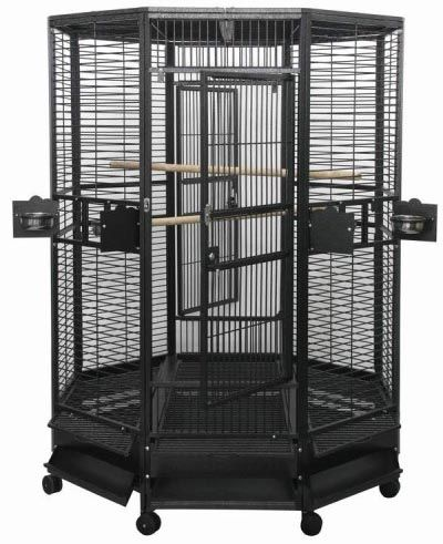 Large parrot cage | Large Bird Cage | AE OCT 5252