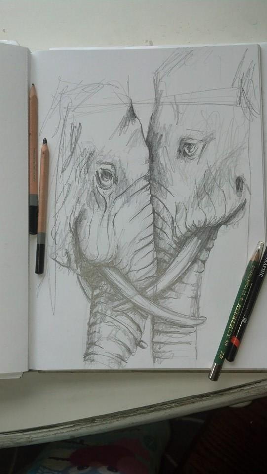 Elefante a lápiz
