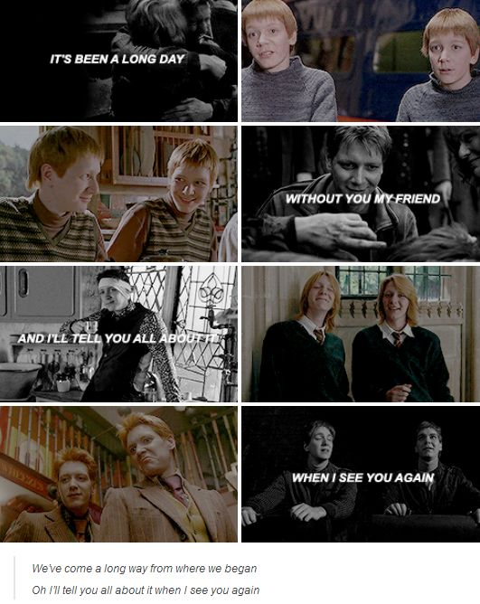 harry potter. -- why would you do this?!!!! You realize I'm crying now?!!