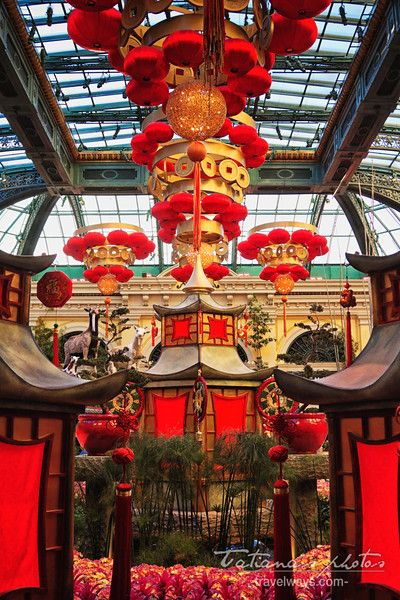 Chinese New Year Las Vegas At The Conservatory U0026 Botanical Gardens At  Bellagio #ChineseNewYearLasVegas