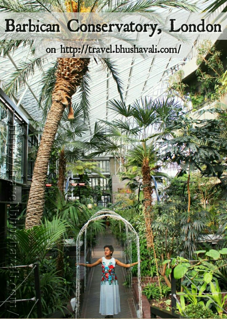 Greenery atop in 4th & 5th floors in the midst of the city... #travelblog #photoblog #travelblogger #ttop #VisitLondon #VisitEngland #LoveGreatBritain #Botany #Conservatory #Citybreak #Barbican