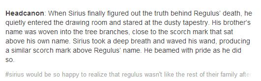 The feels. I have them all. Sirius would have loved to know that there was someone in his immediate family that was good.