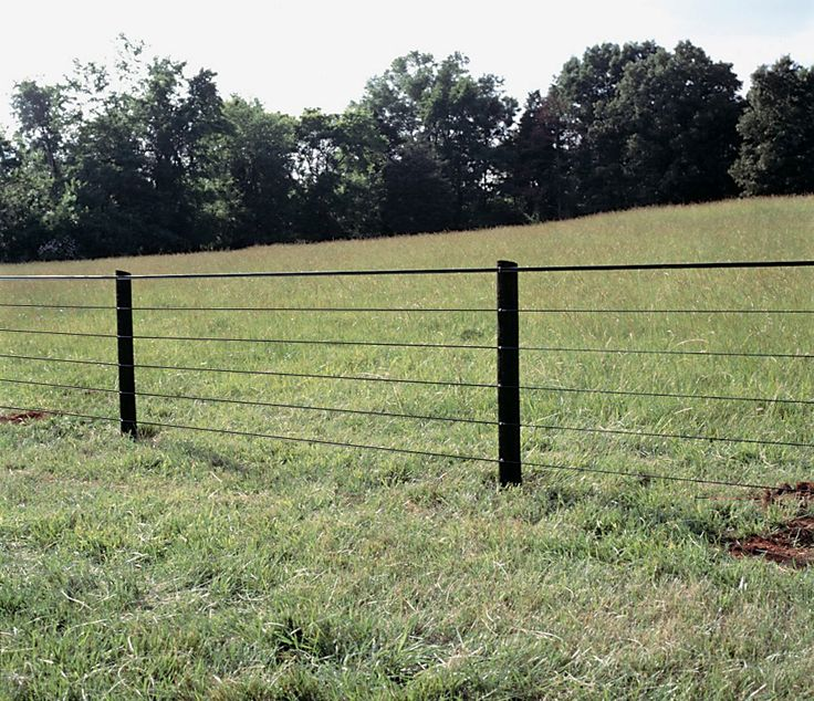 44 Best Horse Fence Images On Pinterest Horse Horse