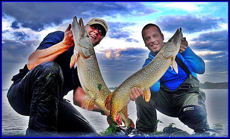 Specimen bank fishing