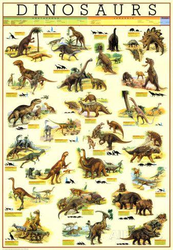 Dinosaurussen Poster bij AllPosters.nl