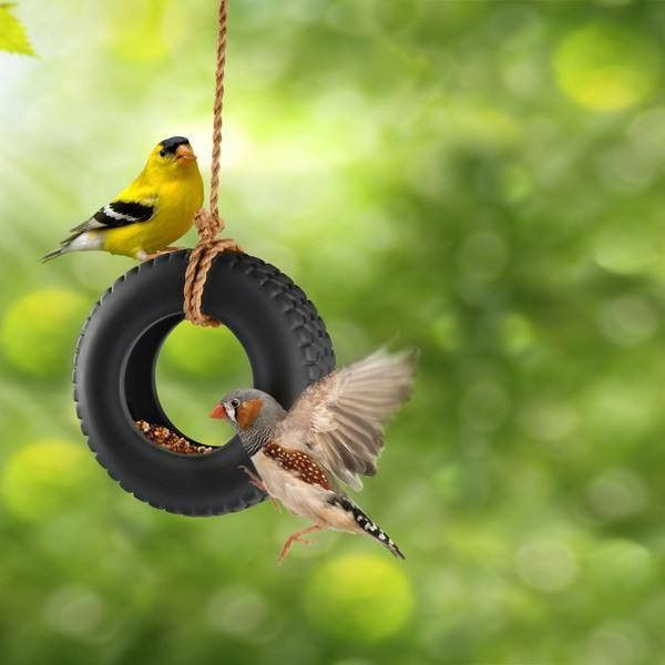 Fred Swing Time Ceramic Bird Feeder  #gift #cool #mzube #shopping #quirky #gifts #birthday #cheap #presents #sale   https://www.mzube.co.uk