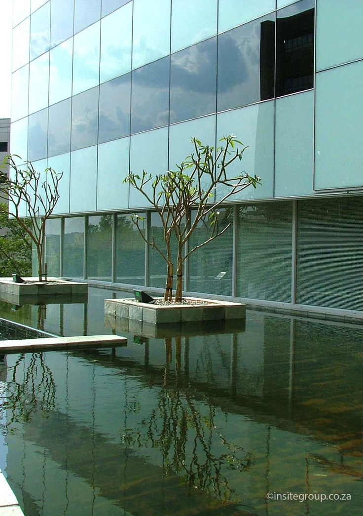 Water feature and planter design at 22 Fredman drive, Sandton, South Africa, by Insite landscape architects.