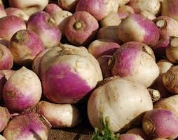 turnip - Google Search: Squash Potatoes, Mashed Potatoes, Carb Food, P3 Recipes, Turnip, Root Vegetables, Dinner Tonight, Mashed Vegetables