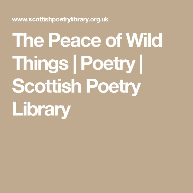 The Peace of Wild Things | Poetry | Scottish Poetry Library