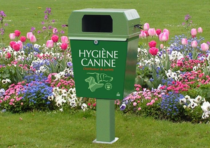 Les 25 meilleures id es de la cat gorie crotte de chien sur pinterest porte chien laisse pour - Crotte de chien dans le jardin ...