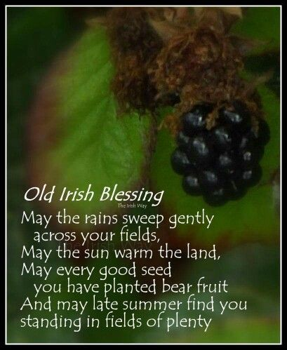 Old Irish Blessing Irish Sayings Blessings And Proverbs