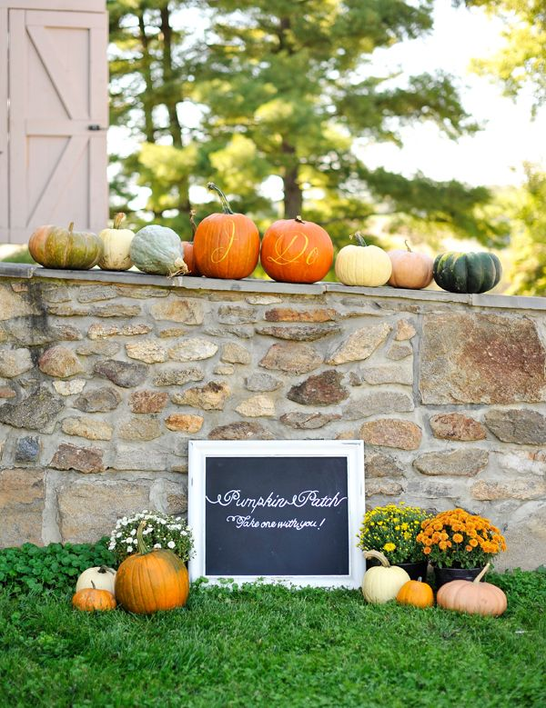 Wedding Pumpkin Patch | Natalie Franke Photography via Bayside Bride