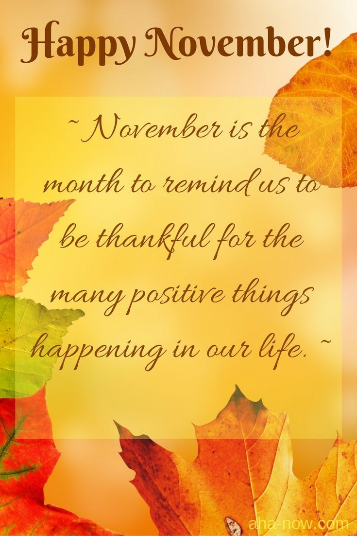 Happy November Everyone! ~ November is the month to remind us to be thankful for the many positive things happening in our life. ~ #AhaNOW #words #saying