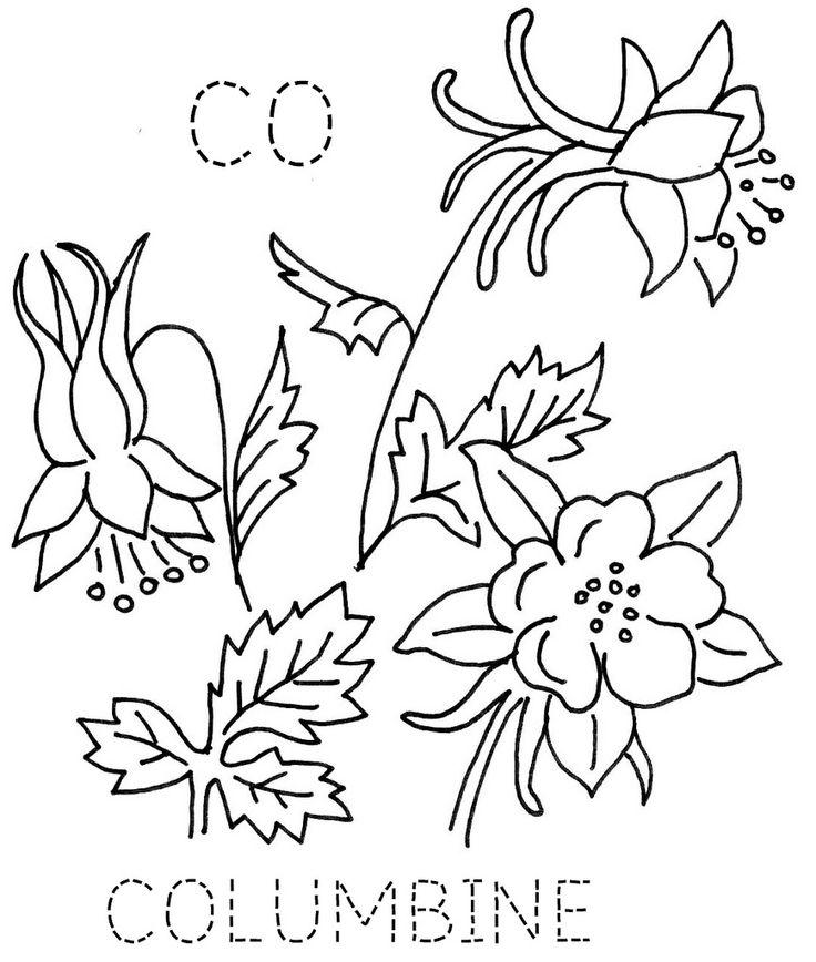 Columbine Flower Line Drawing : Colorado columbine 퀼트 및 꽃