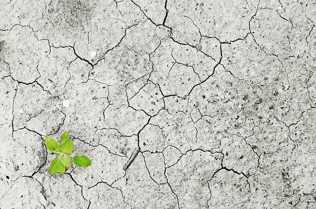 Medida de los impactos psicosocial debido a los cambios ambientales