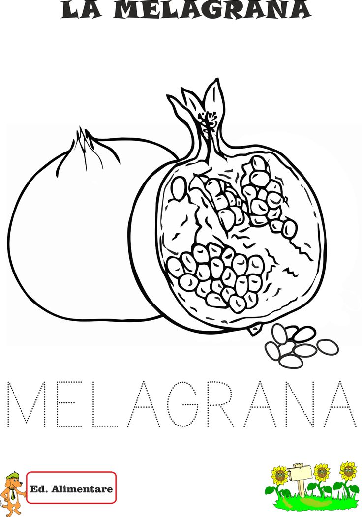 disegni di frutta