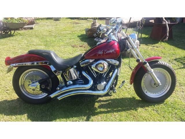 1988 HARLEY-DAVIDSON FXST SOFTAIL is listed For Sale on Austree - Free Classifieds Ads from all around Australia - http://www.austree.com.au/automotive/motorcycles-scooters/motorcycles/1988-harley-davidson-fxst-softail_i3043