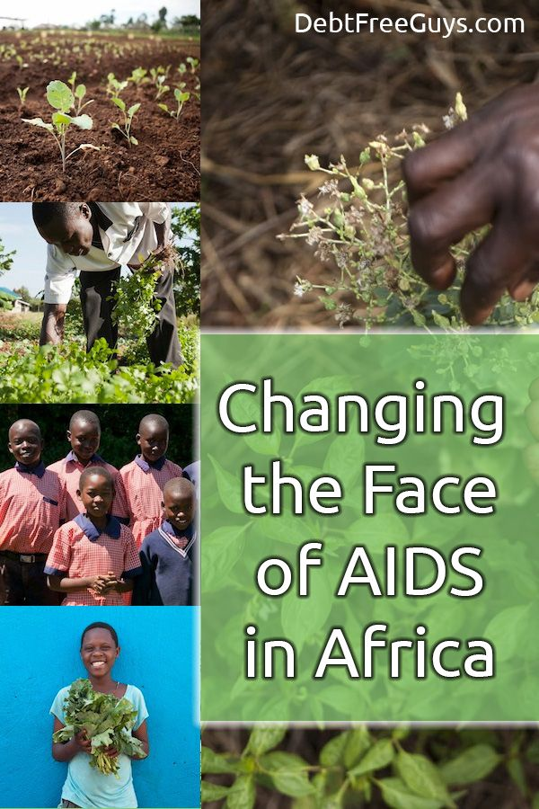 the shocking statistics of aids in africa Data and statistics about hiv/aids skip to main content data and statistics fact buffet who african region.