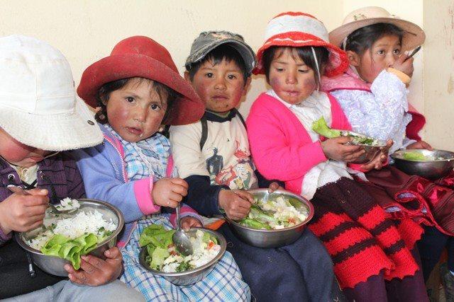 CARE arbeitet daran, die Bedingungen, denen die Indios in Peru ausgesetzt sind dauerhaft zu verbessern. Zusammen mit den Gemeinden hat CARE fünf geeignete Maßnahmen entwickelt:  1: Wasserversorgung verbessern = Ernte steigern  2: Wissen der Eltern schulen = Ernährung ändern  3: Gemeinden stärken (z.B. durch den Bau von Gemeindehäusern) = Armut verringern  4: Bildung ermöglichen, Kinder in die Schule schicken = den Kreislauf beenden  5: Ihr CARE Nothilfepaket für Indio- Kinder in Peru