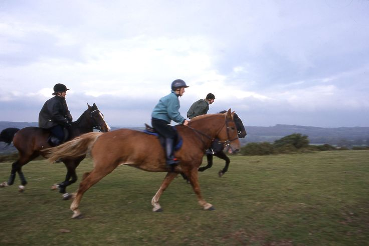 Ride through acres and acres of Dartmoor National Park, one of the last great wildernesses in the UK.  http://www.heartofdevon.com/things-to-do/dartmoor-national-park-p234193