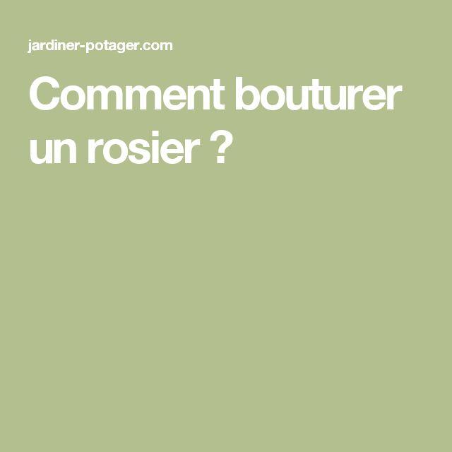 17 best ideas about comment bouturer un rosier on for Comment tailler un potiron