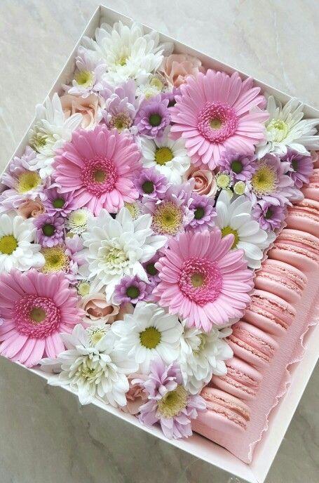 Подарочная коробочка с живыми цветами и макаронс. Доставка по Таллинну. Для заказа  www.facebook.com/teiepidu или www.pidu24.eu/shop