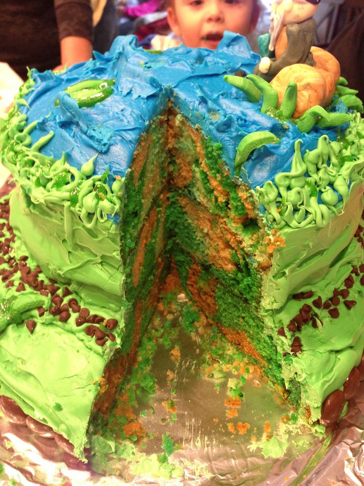 Duck Dynasty themed party with camo cake