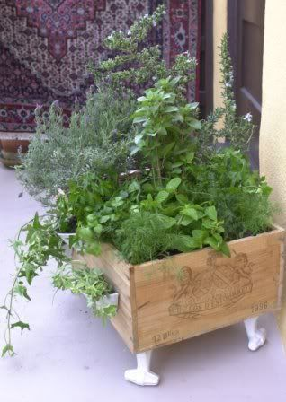 Wine crate herb garden -- lots of cute container garden ideas