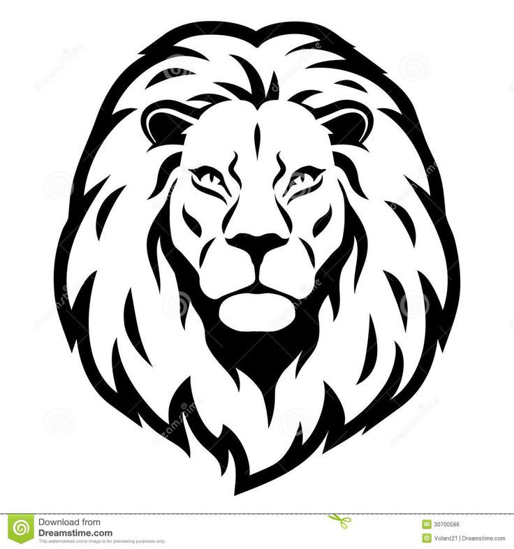 Line Drawing Lion Face : Best lion face drawing ideas on pinterest head
