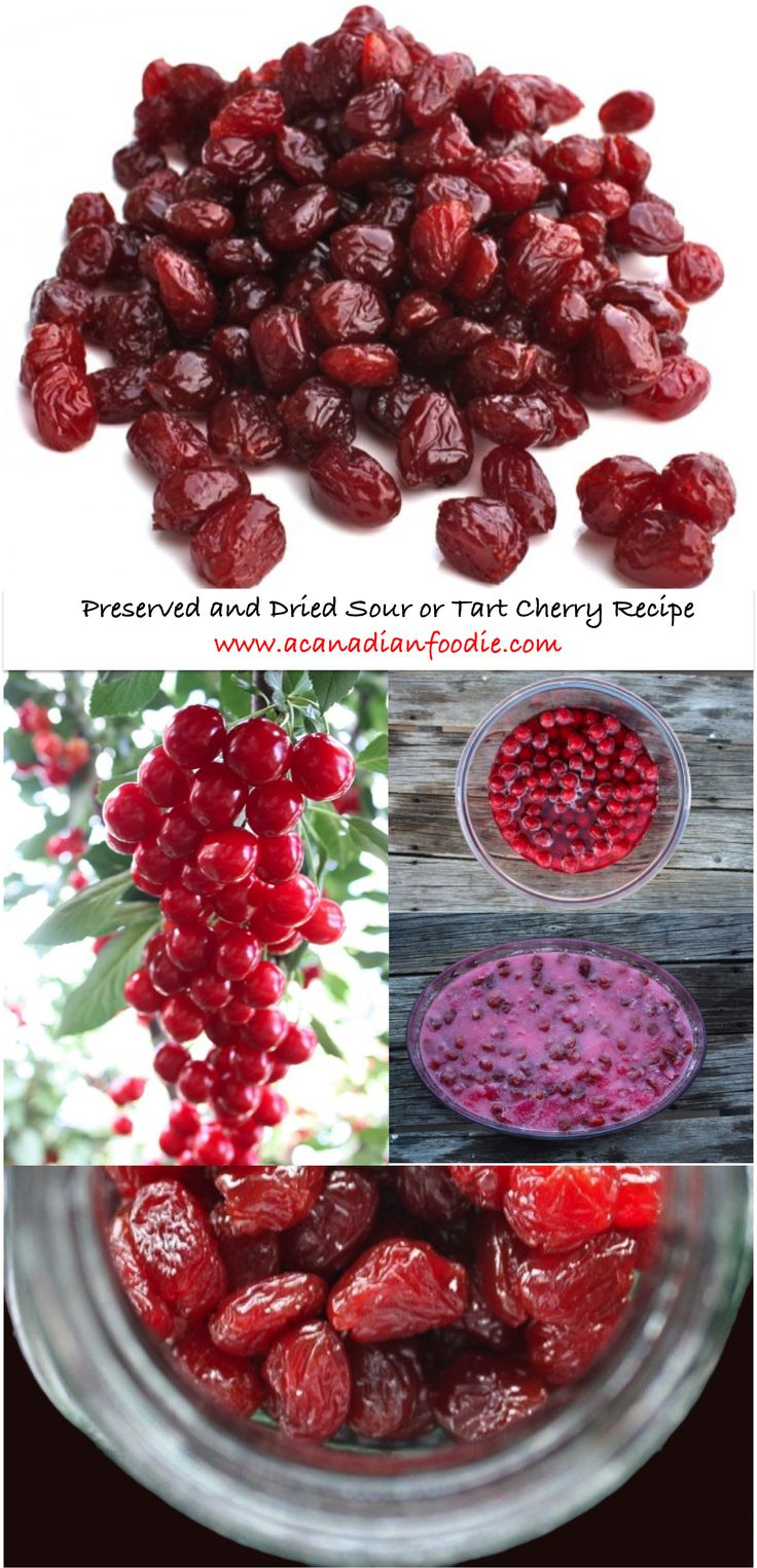 A Canadian Foodie Original: Sour or Tart Preserved and Dried Evans Cherries. Preserve then dry your sour cherries into these plump jeweled parcels of flavour.
