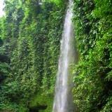 Obyek wisata indonesia Air Terjun Sampuran Widuri   www.wisataindonesia.biz