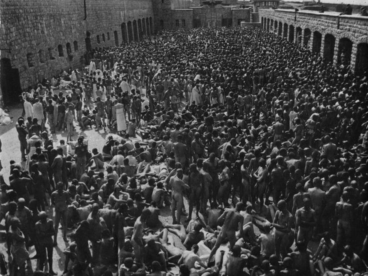 <p>Cientos de españoles en Mauthausen (Francisco Boix). </p>