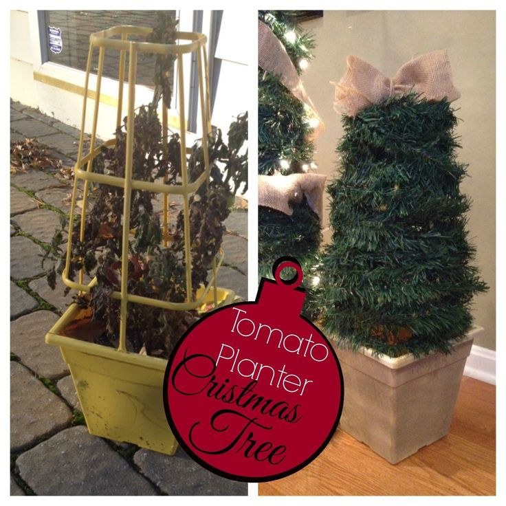 Two It Yourself: $2 DIY Small Potted Christmas Trees from Patio Tomato Planter