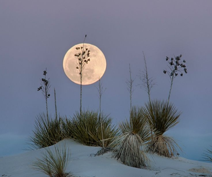 moon rise over White Sands