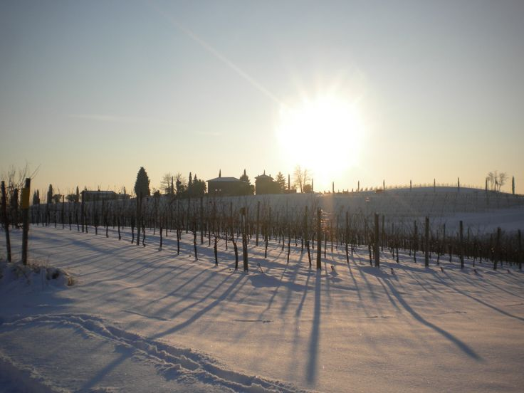 #winter #snow #fvg #collio #capriva #winelovers