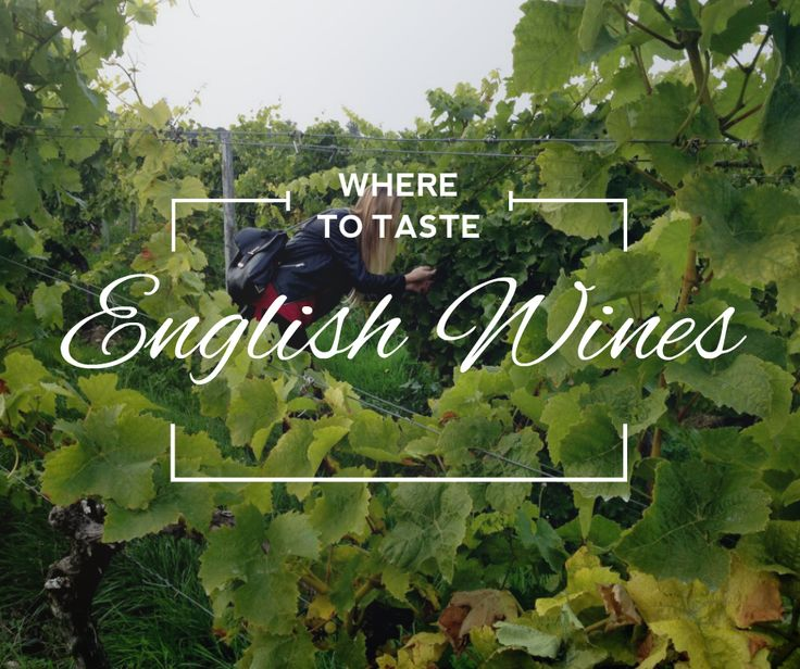 Where to taste English wines | Itchy Feet Diary