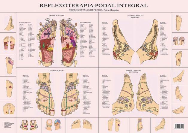 Reflexología Podal: Mapa completo efectos secundarios y contraindicaciones.