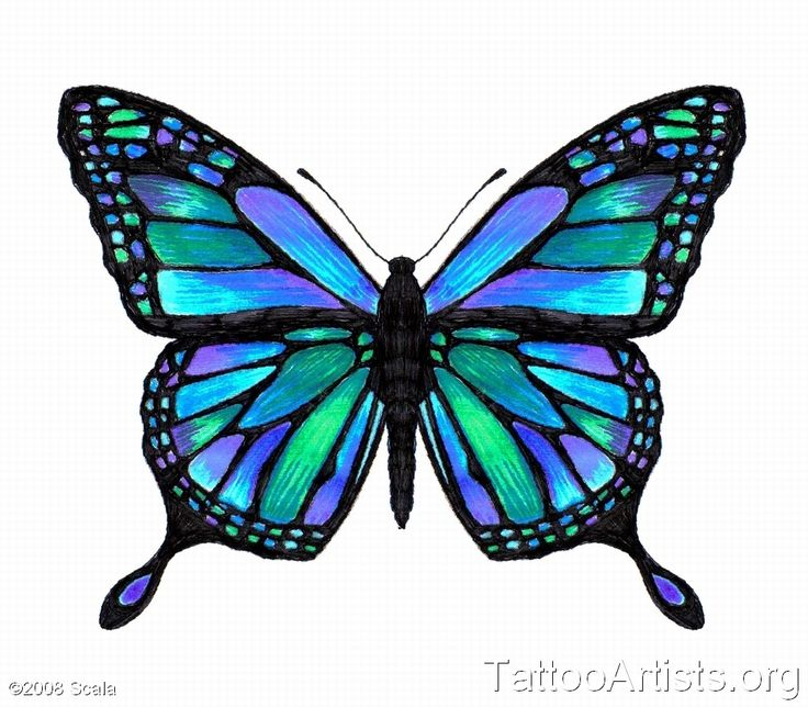 Butterfly Tattoo Designs Online | Vivid Butterfly - Tattoo Artists.org