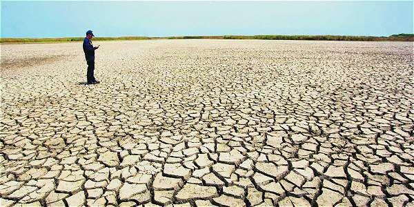 Estragos de la sequía en la Isla Parque Salamanca, en el primer semestre del 2014. La imagen fue premiada por la Universidad Sergio Arboleda de Santa Marta.